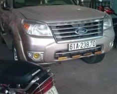 Bán Ford Everest sản xuất 2009, màu hồng phấn giá 480 triệu tại Tp.HCM