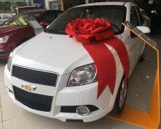 Chevrolet Aveo - bao hồ sơ kinh doanh - giá bao tốt nhất miền Nam giá 495 triệu tại Tp.HCM