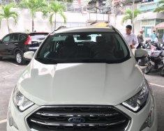 Ford Ecosport 2018 giảm giá kịch sàn - tặng phụ kiện khủng LH: 01684577862 giá 540 triệu tại Tp.HCM