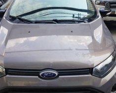 Cần bán Ford EcoSport 2017, màu nâu giá 590 triệu tại Tp.HCM