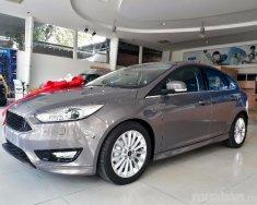 Cần bán Ford Focus đời 2017, màu nâu, nhập khẩu, 770 triệu giá 770 triệu tại Đồng Nai
