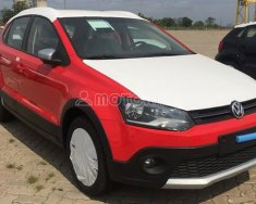 Volkswagen Polo 2018 giá 725 triệu tại Tp.HCM