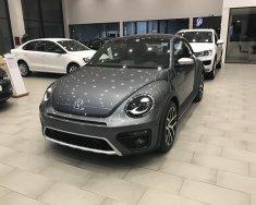 Cần bán xe Volkswagen Beetle Dune 2.0 sản xuất năm 2018, màu xám (ghi), nhập khẩu giá 1 tỷ 469 tr tại Hà Nội