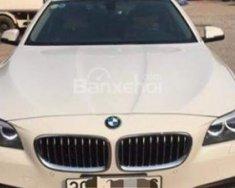 Bán BMW 5 Series 520i năm 2016, màu trắng, nhập khẩu nguyên chiếc giá 1 tỷ 680 tr tại Tp.HCM