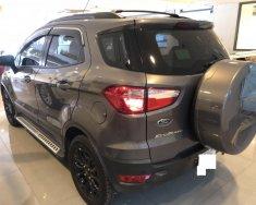 Bán xe Ford EcoSport Titanium Black Edition 2017, xe cực keng giá 592 triệu tại Tp.HCM