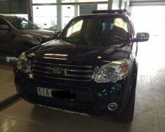 Cần bán lại xe Ford Everest 2013, màu đen số tự động giá 655 triệu tại Tp.HCM