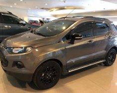 Bán Ford EcoSport 1.5L Titanium đời 2017, màu nâu  giá 590 triệu tại Tp.HCM