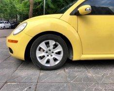 Bán ô tô Volkswagen Beetle đời 2007, màu vàng, xe nhập số sàn, 450tr giá 450 triệu tại Hà Nội