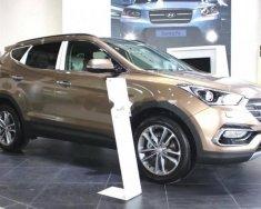 Bán Hyundai Santa Fe đời 2018, màu nâu giá 1 tỷ 30 tr tại Tp.HCM