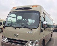 Bán Hyundai County Limousine năm sản xuất 2017, màu kem (be) giá 1 tỷ 310 tr tại Hà Nội