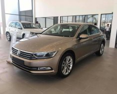 Bán Xe Volkswagen Passat Bluemotion sedan phân khúc D xe Đức nhập khẩu chính hãng mới 100% giá rẻ. LH ngay 0933 365 188 giá 1 tỷ 450 tr tại Tp.HCM