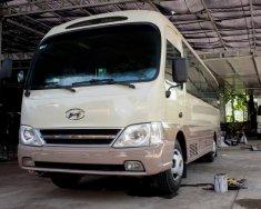 Bán xe 29 chỗ Hyundai County 2010 của nhà máy 3/2, đời 2010 màu ghi vàng tại TPHCM giá 480 triệu tại Tp.HCM
