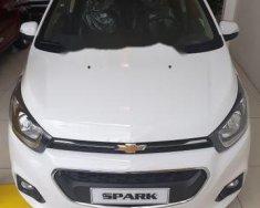 Cần bán xe Chevrolet Spark năm sản xuất 2018, màu trắng, giá tốt giá 389 triệu tại Cần Thơ