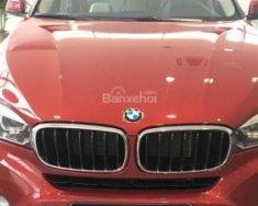 Bán xe BMW X6 có xe giao ngay đời 2017, màu đỏ, nhập khẩu nguyên chiếc giá 3 tỷ 649 tr tại Tp.HCM