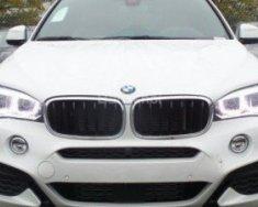 Cần bán BMW X6 năm sản xuất 2017, màu trắng, nhập khẩu giá 3 tỷ 695 tr tại Hà Nội