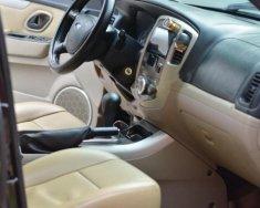 Cần bán lại xe Ford Escape sản xuất 2007, màu đen, nhập khẩu giá 333 triệu tại Hà Nội