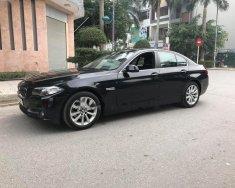 Bán ô tô BMW 5 Series 520i đời 2015, màu đen, nhập khẩu đẹp như mới giá 1 tỷ 510 tr tại Hà Nội