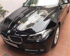 Bán BMW 5 Series 520i sản xuất 2015, màu đen, nhập khẩu xe gia đình giá 1 tỷ 550 tr tại Tp.HCM