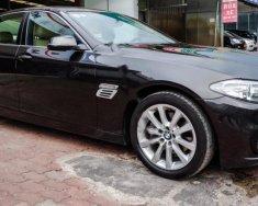 Bán xe BMW 5 Series 520i năm sản xuất 2016, màu nâu, xe nhập giá 1 tỷ 730 tr tại Hà Nội