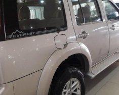 Bán xe Ford Everest đời 2009, màu bạc giá 460 triệu tại Đồng Nai