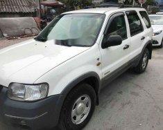 Bán ô tô Ford Escape AT XLT 3.0 đời 2003, màu trắng như mới, 165tr giá 165 triệu tại Hà Nội