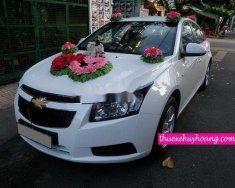 Bán Chevrolet Cruze năm 2011, màu trắng chính chủ, giá tốt giá 315 triệu tại Tp.HCM