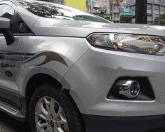 Cần bán gấp Ford EcoSport 1.5 Titanium 2017, màu bạc, giá tốt giá 615 triệu tại Tp.HCM