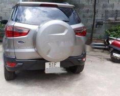 Cần bán Ford EcoSport năm sản xuất 2016, màu bạc  giá 535 triệu tại Tp.HCM