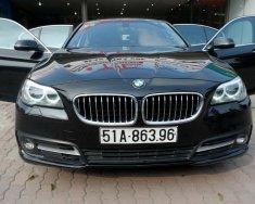 Xe Cũ BMW 5 520i 2014 giá 1 tỷ 420 tr tại Cả nước