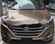 Cần bán Hyundai Tucson đời 2018, màu nâu giá cạnh tranh giá 838 triệu tại Tp.HCM