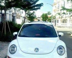 Bán xe thể thao Volkswagen Beetle Turbo, đời 2008, nhập khẩu, xe tuyệt đẹp giá 458 triệu tại Tp.HCM