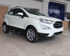Bán xe Ford EcoSport 1.5L Ambiente MT đời 2018, LH: 0935.437.595 để được tư vấn giá 545 triệu tại Tp.HCM