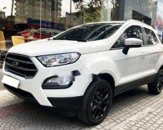 Bán xe Ford EcoSport đời 2018, nhập khẩu nguyên chiếc  giá 593 triệu tại Tp.HCM