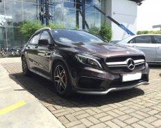 Xe Cũ Mercedes-Benz GLA 45 AMG 2015 giá 1 tỷ 630 tr tại Cả nước