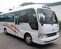 Bán ô tô Hyundai County Limousine SL 2017 xe ô tô khách được nhập khẩu 100% phụ tùng từ Hàn Quốc giá 1 tỷ 340 tr tại Đà Nẵng