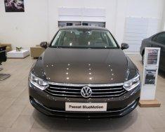 Bán xe Volkswagen Passat Bluemotion Sedan D xe Đức nhập khẩu chính hãng mới 100% giá rẻ. LH 0933 365 188 giá 1 tỷ 450 tr tại Tp.HCM