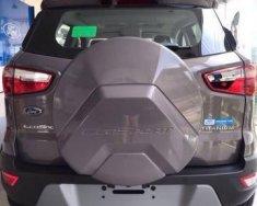 Bán xe Ford EcoSport đời 2018, màu xám, 645tr giá 645 triệu tại Tp.HCM