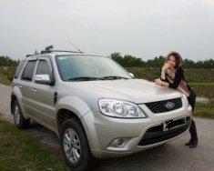 Cần bán xe Ford Escape 2.0 AT đời 2012, màu bạc chính chủ giá 480 triệu tại Hà Nội