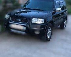 Bán ô tô Ford Escape 3.0 sản xuất năm 2004, màu đen như mới giá 250 triệu tại BR-Vũng Tàu