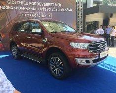 Bán Everest model 2019 bản 2.0 Bi-turbo nhập Thái, giao xe sớm nhất, nhiều ưu đãi hấp dẫn giá 1 tỷ 185 tr tại Hà Nội