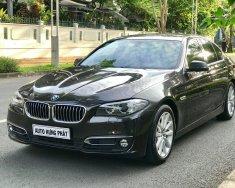Cần bán xe BMW 5 Series 528i đời 2016, màu nâu, xe nhập giá 1 tỷ 790 tr tại Tp.HCM