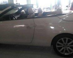 Bán xe Volkswagen Eos đời 2007, màu trắng, nhập khẩu giá 585 triệu tại Đồng Nai