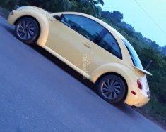 Bán New Beetle 2005 số tự động, nhập khẩu giá 110 triệu tại Hà Nội