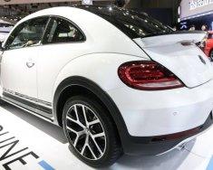 Bán Volkswagen Beetle 2018, màu trắng, nhập khẩu nguyên chiếc giá 1 tỷ 469 tr tại Khánh Hòa