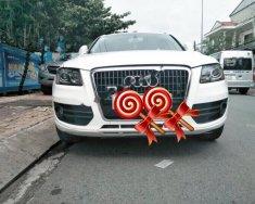 Bán Audi Q5 đời 2010, màu trắng, nhập khẩu giá 1 tỷ 50 tr tại Bình Dương