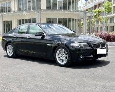 Cần bán xe BMW 5 Series 520 năm 2015, màu đen, nhập khẩu giá 1 tỷ 540 tr tại Tp.HCM