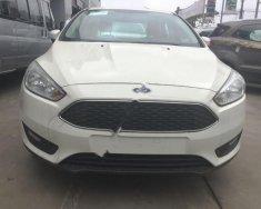 Cần bán Ford Focus đời 2018, màu trắng giá 569 triệu tại Hà Nội