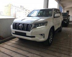 Bán Toyota Prado Prado VX 2018, màu trắng, nhập khẩu giá 2 tỷ 348 tr tại Hà Nội