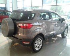 Cần bán gấp Ford EcoSport đời 2016, màu xám giá cạnh tranh giá 57 triệu tại Đà Nẵng