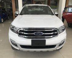 Ford Everest 2018, liên hệ để nhận xe sớm nhất, nhận quà ưu đãi nhất, có đủ màu để chọn giá 899 triệu tại Tp.HCM